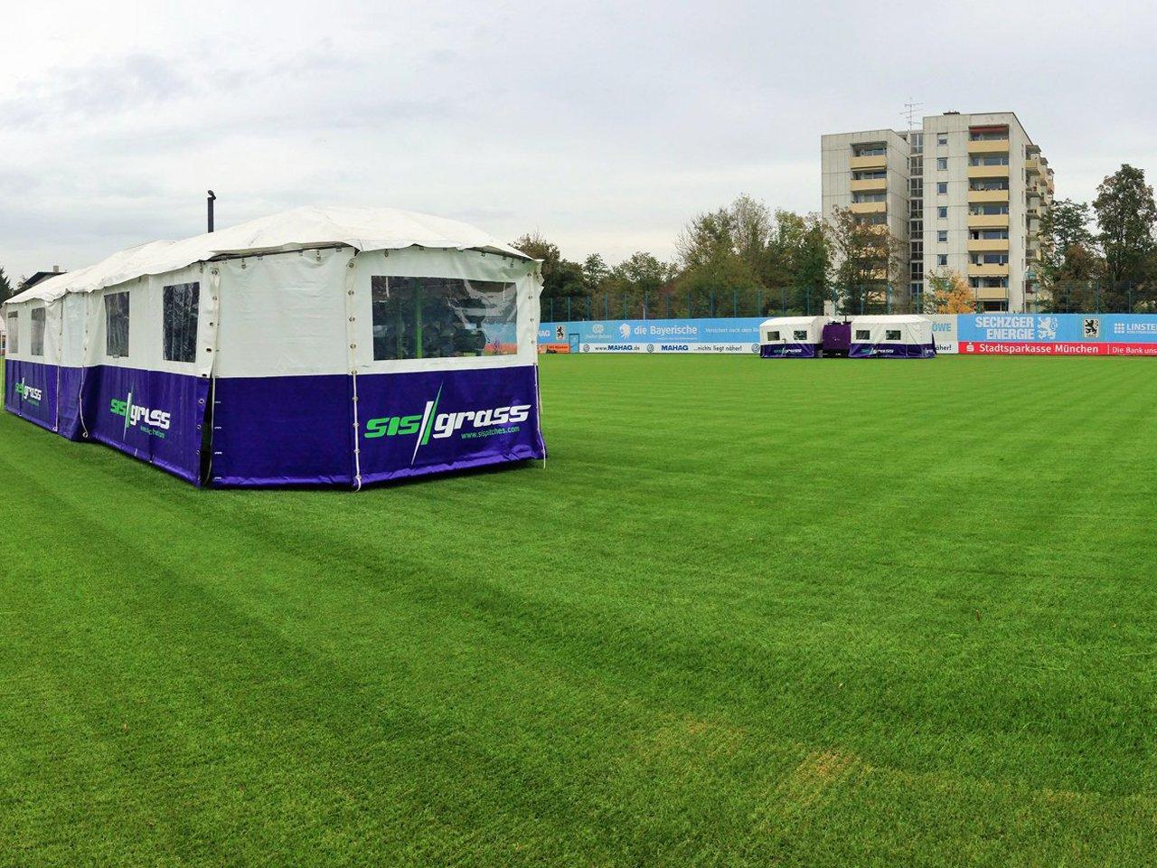 SIS Grass TSV 1860 München