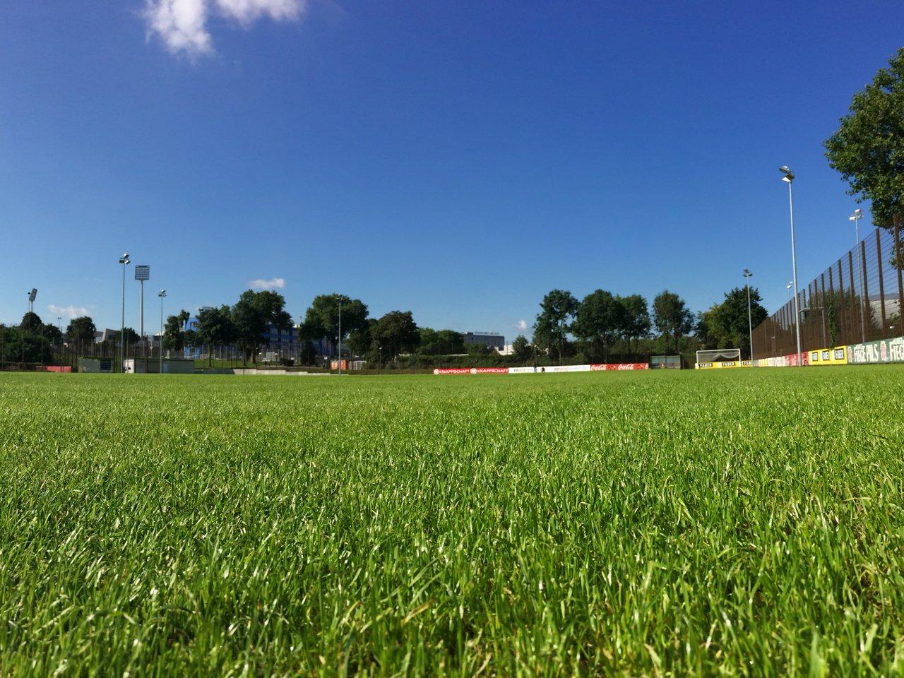 Trainingsplatz VfL Bochum