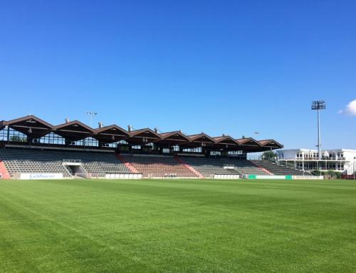 Neuer Hybrid-Rasen im Sportpark Unterhaching